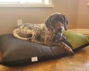Henry On Bolster Bed 177x142
